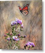 Comeing In For A Landing Metal Print