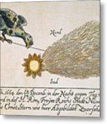 Comet, 1664 Metal Print