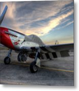 Comfortably Numb Buttoned Up For The Night At The Hollister Airshow Metal Print