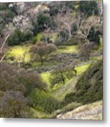 Coming Down The Hill Metal Print