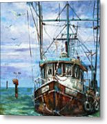 Coming Home Metal Print by Dianne Parks