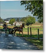 Coming Home Metal Print