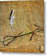 Coming Home To Mother Nature Zen Metal Print