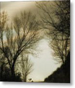Coming Up The Drive 2 Metal Print