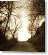 Coming Up The Drive 3 Metal Print