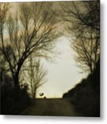 Coming Up The Drive Metal Print