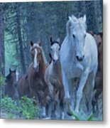 Coming Up The Hill Metal Print