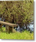 Communing With Nature Metal Print