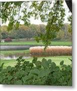 Como Park Golf Course In The Fall Metal Print