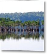 Compass Lake Metal Print by Peter  McIntosh