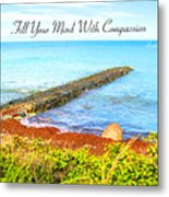 Compassion Metal Print