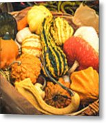 Composition Of Various Gourds In A Basket With Vignetting Metal Print