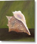Conch Shell Metal Print by Shirley Lawing