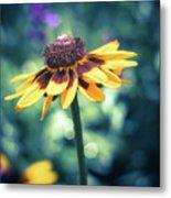 Cone Flower 2 Metal Print