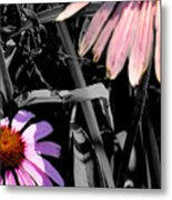 Cone Flower Tapestry Metal Print