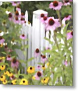 Cone Flowers And Fence Metal Print