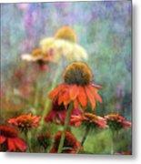 Coneflower Garden 2789 Idp_2 Metal Print
