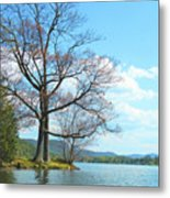 Cone's Point Metal Print
