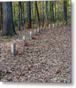 13 Unknown Confederate Soldiers - Natchez Trace Metal Print