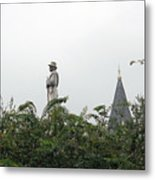 Confederate Soldier Standing Tall Metal Print