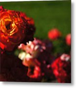 Confetti Roses Metal Print