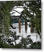 Congaree River Glimpse Metal Print