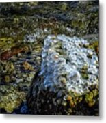 Conglomerate Ice Metal Print