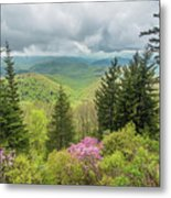 Conifers And Blooms Metal Print