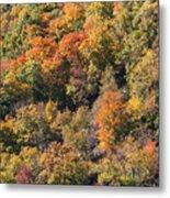 Connecticut Fall Color Metal Print