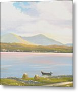 Connemara Cottage 2011 Metal Print
