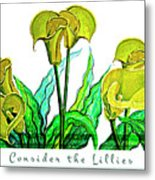 Consider The Lillies Metal Print
