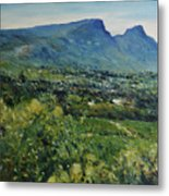 Constantia Valley Cape Town South Africa 2017 Metal Print
