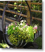 Contained Flowers  Metal Print