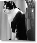 Contemplative Cat Black And White Metal Print