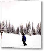 Continental Divide January 1 2000 Metal Print