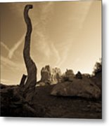 Contrails And Driftwood Metal Print