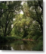 Cook County Forest Preserve No 6 Metal Print