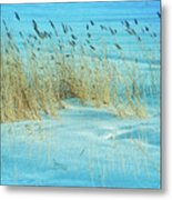 Cool Blue Blowing In The Wind Metal Print