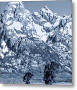 Cool Blue Monotone Grand Teton Metal Print