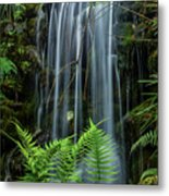 Cool Spot On A Hot Day Metal Print