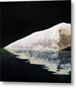 Cooling Off-chinook Metal Print