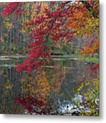 Cooper Mill Pond Metal Print