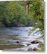 Coosawattee River Metal Print