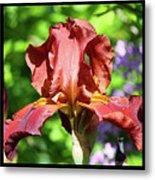Copper Iris Triptych Squared Metal Print