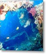 Coral Archways Metal Print