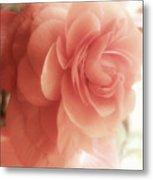 Peach Petals Glow Metal Print
