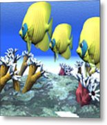 Coral Moods Metal Print by Corey Ford