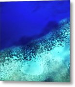 Coral Reef Seen Through Clear Waters Surrounding Mosso Island Metal Print