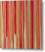 Coral Stripe  Metal Print