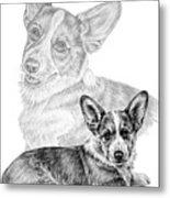 Corgi Dog Art Print Metal Print